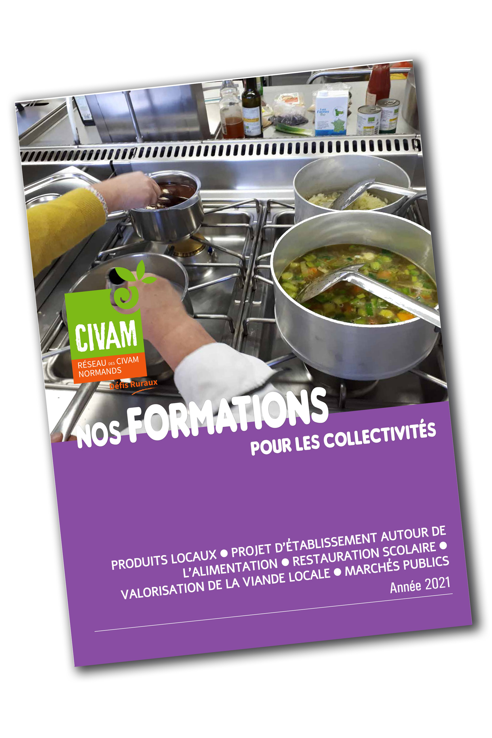 Supplement formations collectivites 2021 ombre